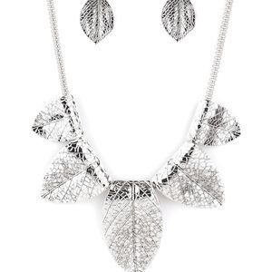 Jewelry - Paparazzi Necklace